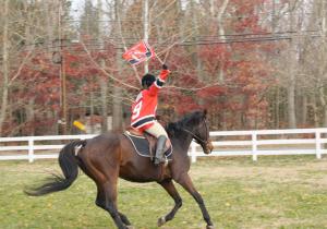 Kim, Devils Cavalry
